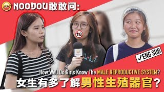 【NOODOU敢敢问】女生有多了解男性生殖器官? How Well Do Girls Know The MALE REPRODUCTIVE SYSTEM?