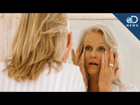 Can Science Stop Aging?