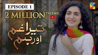 Tera Ghum Aur Hum Episode 1 HUM TV Drama 1 July 2020