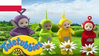 ☆ Teletubisie Po Polsku ☆ sezon 15 epizod 27 ☆ zupełnie nowe odcinki