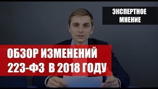 Изменения в 223-ФЗ в 2018 году