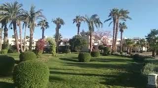 Елена отдыхала в Египте в начале ноябре в отеле Lotus Bay 4 в Сафаге