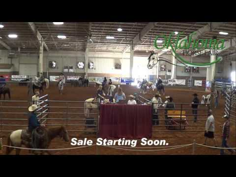 2017 Oklahoma Horse Fair - Oklahoma Select Horse, Mule, and Pony Sale