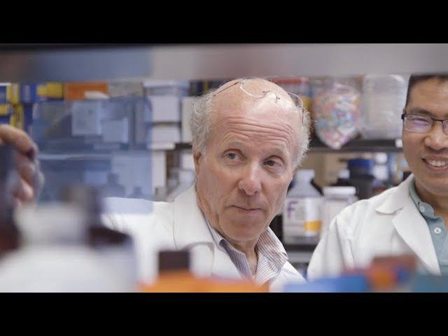 Beta Cell Regeneration Study
