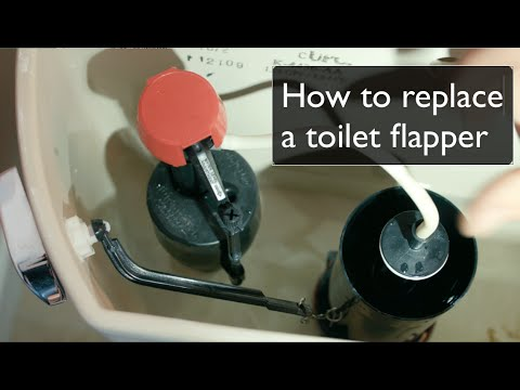 How to Replace A Toilet Flapper  by Best Plumbing Seattle WA 206 6331700  YouTube