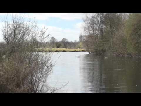 DERWENT VALLEY FISHERY MAIN LAKE, HASLAM'S LANE, DARLEY ABBEY, DERBY, DERBYSHIRE
