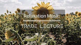 꽃과 함께 듣는 음악 [N°011] - 편안하게 듣는 음악 카페음악 Study Music 피아노연주 연속듣기