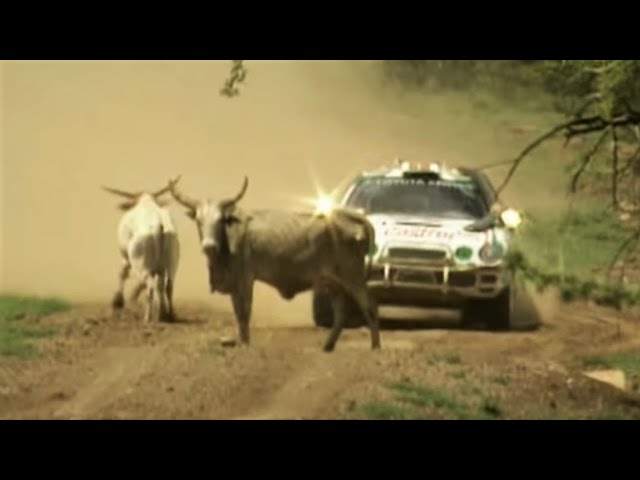 Wrc Tribute 1995 1996 Maximum Attack On The Limit Crashes Best Moments
