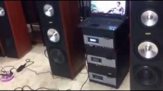 Dàn loa cây âm ly rời: W500 Music Style Goldsound