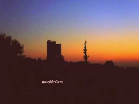 Sultan & Ned Shepard - Roads under Ramallah (Ambient Reprise)