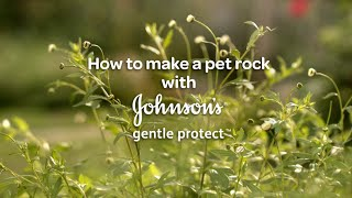 How to Make a Pet Rock