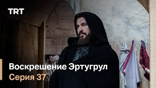 Воскрешение Эртугрул Сезон 1 Серия 37