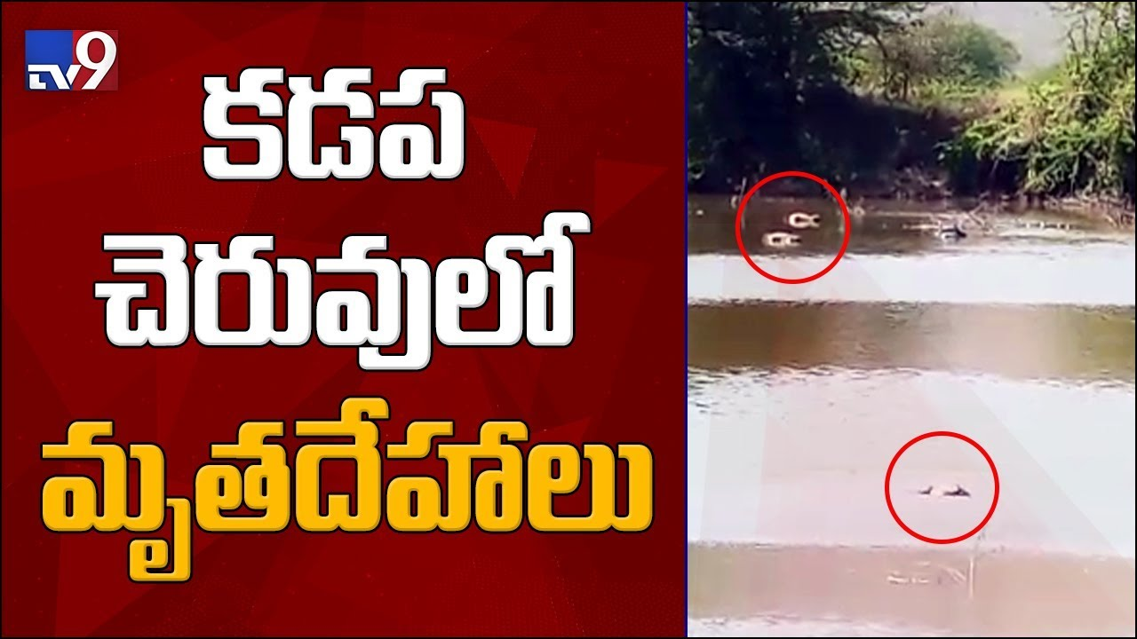 shocking-discovery-of-5-dead-bodies-in-kadapa-pond-tv9