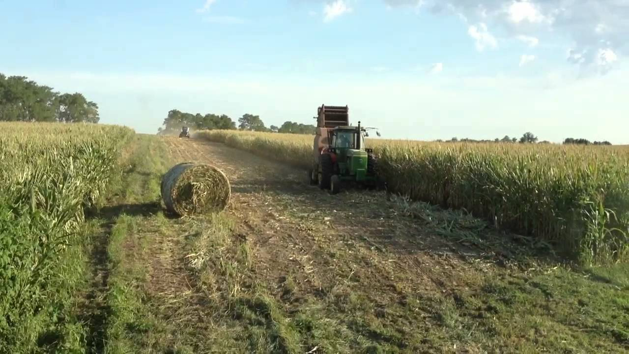 Baling Corn Youtube