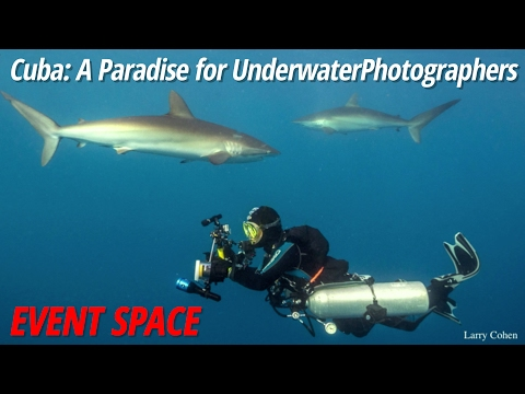 Cuba: A Paradise for Underwater Photographers