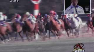 2012年12月23日 第57回有馬記念 レース回顧 内田博幸 ゴールドシップ