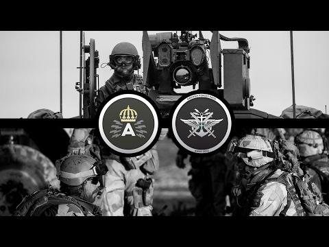 Мод вооруженных сил Швеции