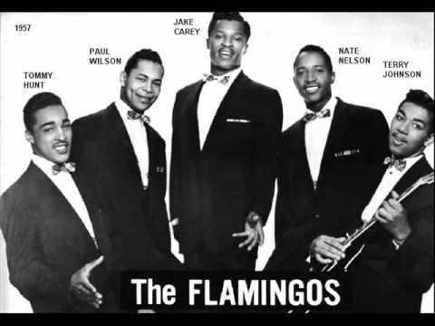 FLAMINGOS - NOBODY LOVES ME LIKE YOU