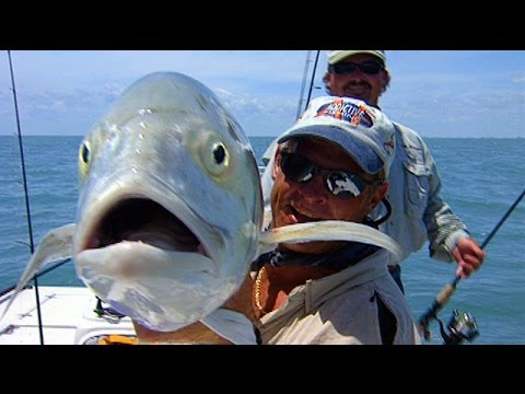 Monster Jack Crevalle Topwater Blowups Off Port Canaveral Florida