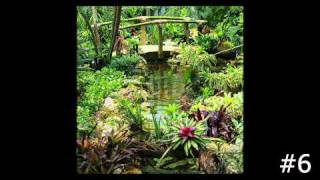 Top Ten Natural Stone And Wooden Bridges By Lucas Lagoons, Expert In Swimming Pools In Sarasota, Fl