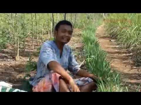 FILM DOKUMENTER DUSUN JALAKAN 2015 - KARANGTARUNA TUNAS MUDA