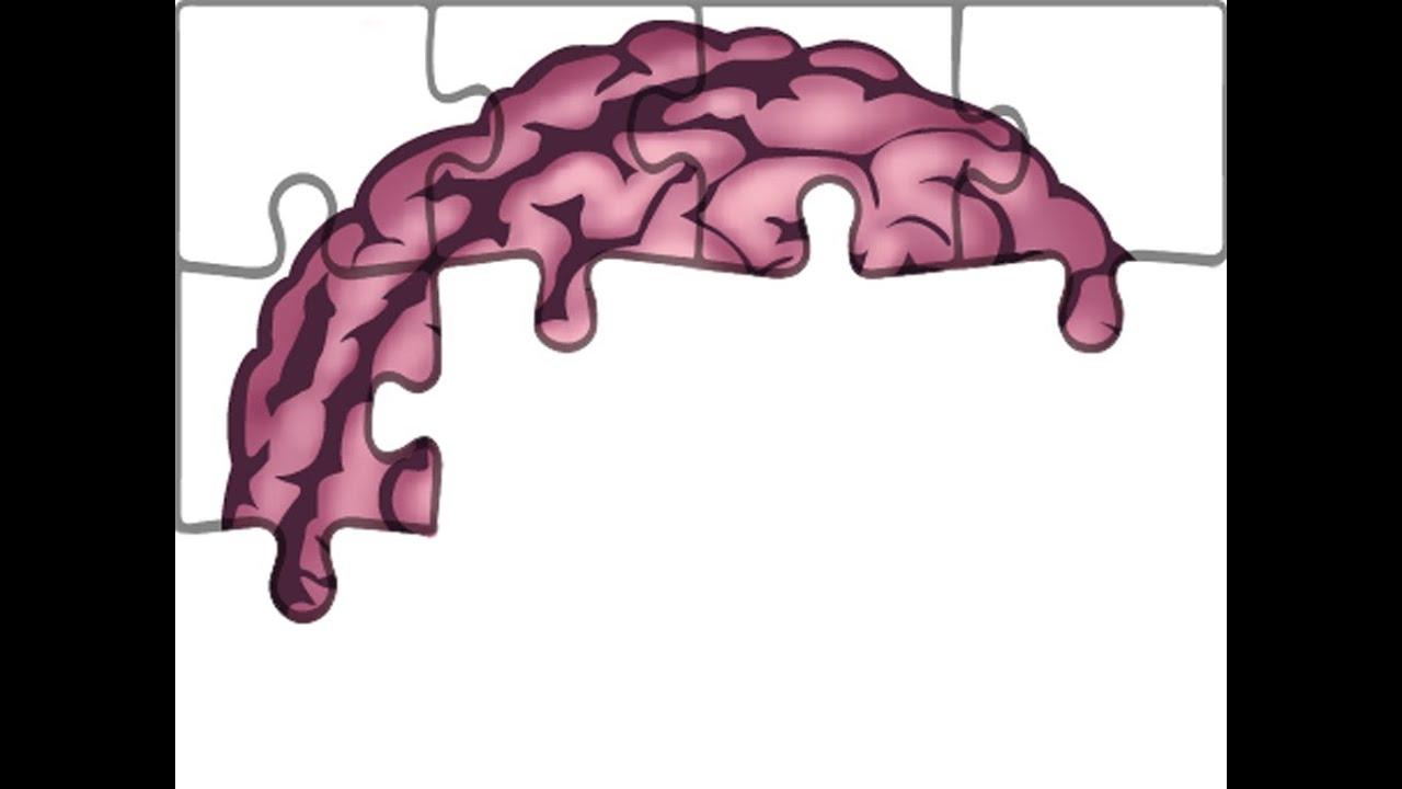 Anatomie - Hirnnerven: Nervus Trigeminus (Teil 1/4) - YouTube