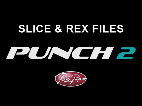 Punch 2 Slice and REX files