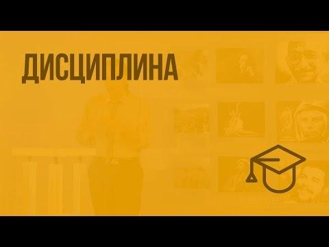 Дисциплина видеоурок