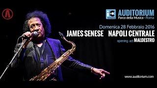 James Senese - Auditorium Parco della Musica | iCompany Report