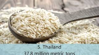 Top 10 rice producing countries