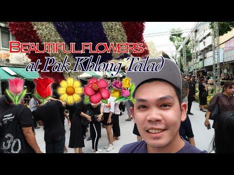 Pak Khlong Talad transforms into walk-in museum for HM King Bhumibol Adulyadej