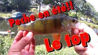 VIDEO DE PECHE : Pêche en été !!