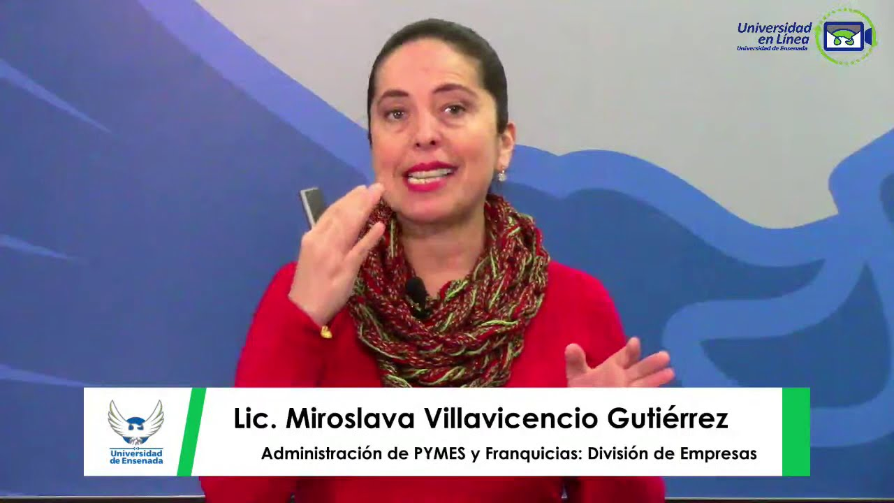 Administración de PYMES y Franquicias: División de Empresas