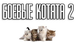 Боевые котята 2