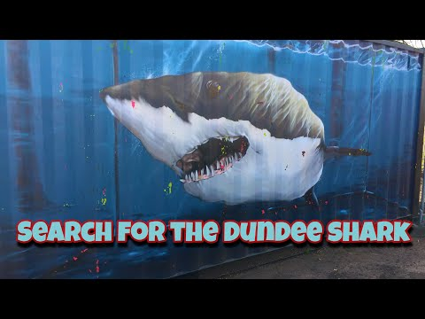 Search For The Dundee Shark .