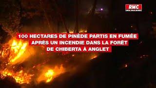 100 hectares de pinède partis en fumée après un incendie dans la forêt de Chiberta à Anglet