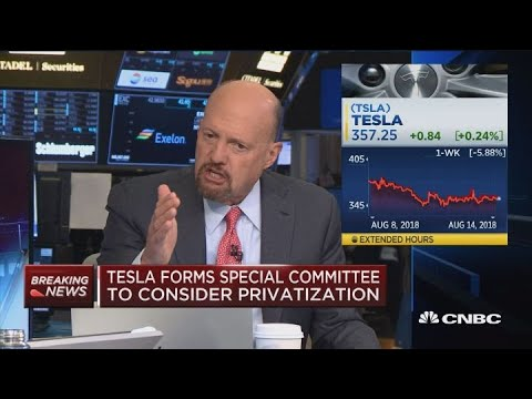 If you\'re shorting Tesla, you\'re shorting the honey badger, says Cramer