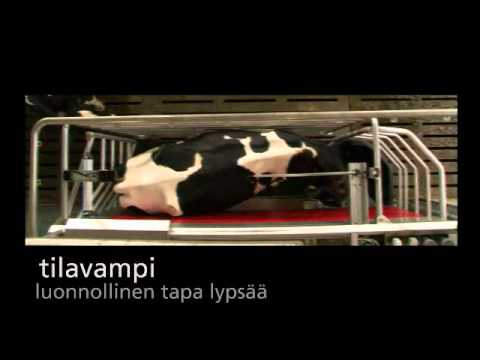Lely Astronaut A4 - Product video (Finnish)