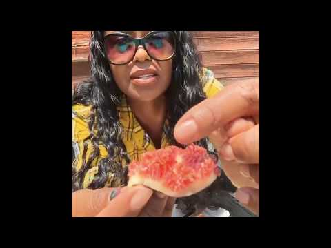 DO NOT WATCH THIS IF YOU EAT FIGS! You've been warned...