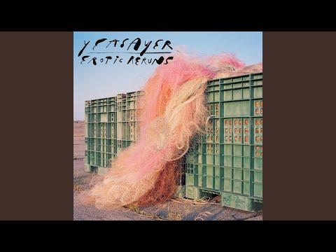 Free Download Ohm Death Mp3 dan Mp4