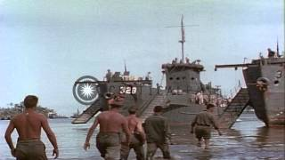 Shore of Guadalcanal Island in Pacific Theater during Battle of Munda. HD Stock Footage