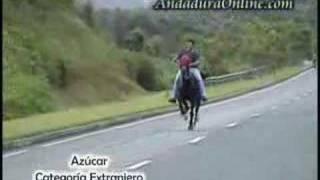 Repeat youtube video Andadura