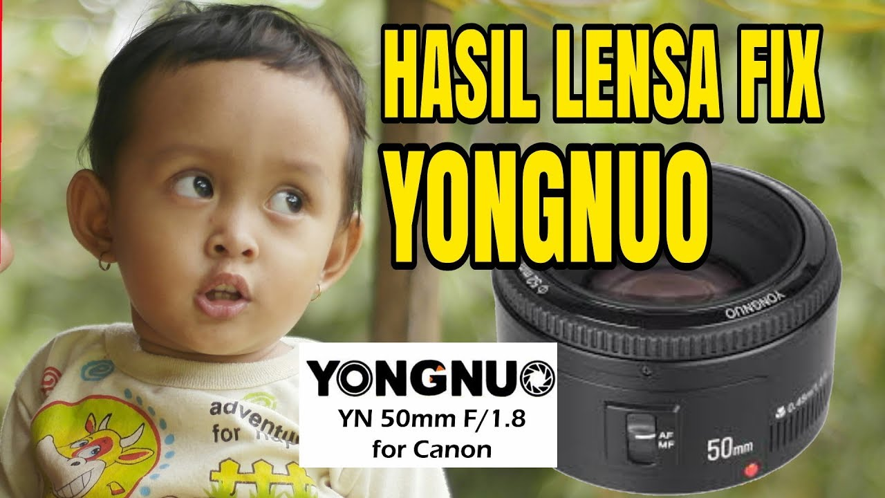 Hasil Lensa Fix Yongnuo 50mm F18 Murah 700rb An Youtube Yn50mm For Nikon
