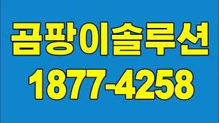 부천 벽지 곰팡이제거, 일산 아파트 단열공사 업체