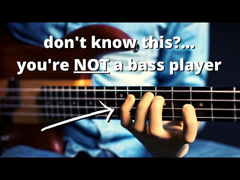 The ONE bass