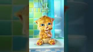 Talking Tom Cat Punjabi Billi Very Funny Video   Video Dailymotion