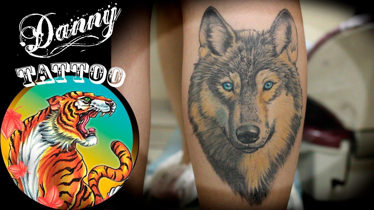 Lobo Colorido Panturrilha Danny Tattoo Colorful Wolf Timelapse