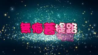 無悔菩提路 特效karaoke字幕