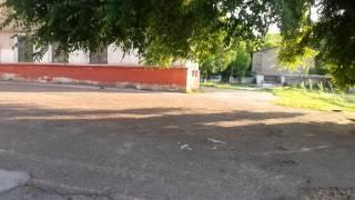 Алмалык школа 15