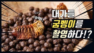 [건강식품촬영] 제품촬영 전문 스튜디오 / 상세페이지용…